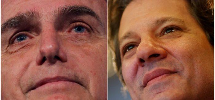XP/Ipespe: Bolsonaro tem 59% dos votos válidos contra 41% de Haddad