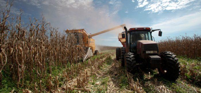 IBGE projeta alta de 1,9% na safra de grãos neste ano