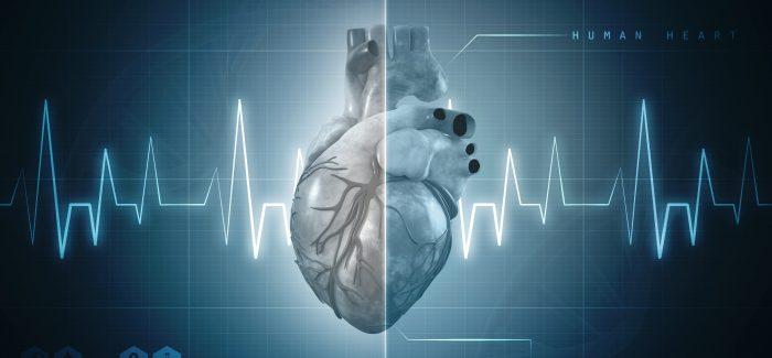 Cientistas israelenses desenvolvem coração impresso em 3D