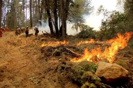 Incêndio florestal agressivo ameaça milhares de casas em cidade do sul da Califórnia